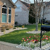 Yard of the Month - April 2021