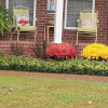 Yard of the Month - October 2020